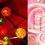 tomako4_037s