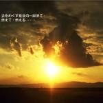 tomako6_0223_s