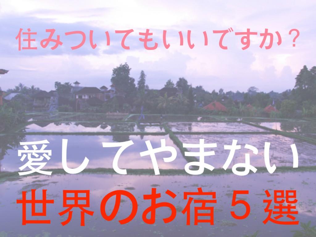 tomako6_031